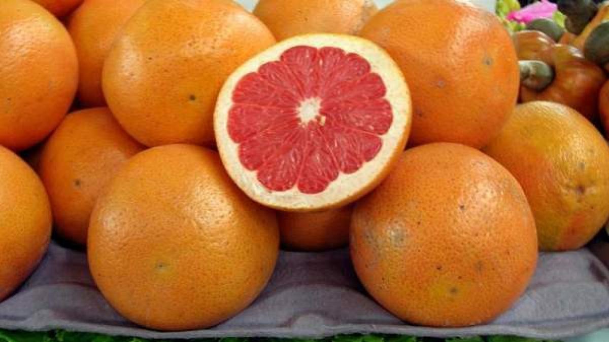 Jugo de toronja naranja y limon para bajar de peso