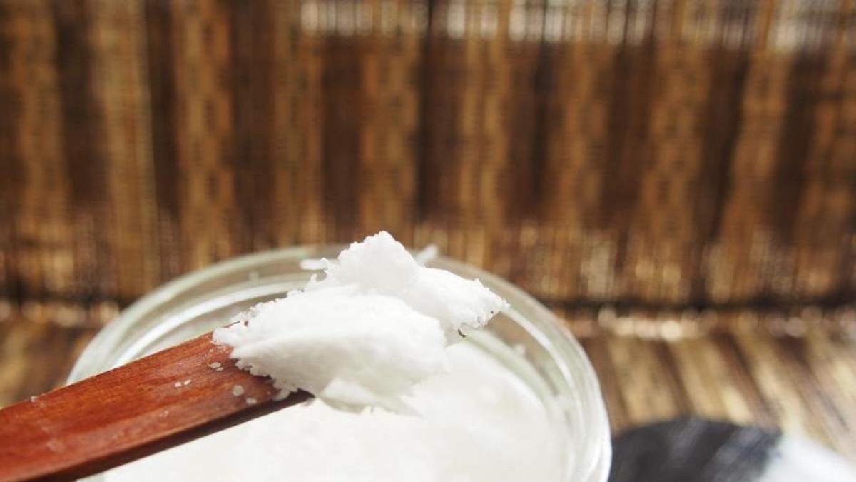 Aceite De Coco Para Hidratar El Cabello Beneficios Y Cómo Se Usa