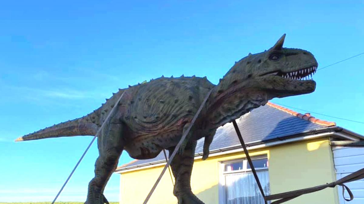 Un Padre Encarga Sin Querer Un Dinosaurio De 6 Metros Para Su Hijo El Buscaba Uno Mucho Mas Pequeno La tienda online de los dinosaurios de españa, figuras de dinosaurios, juguetes, camisetas, libros, peluches, mochilas de dinosaurio, noticias,etc. un dinosaurio de 6 metros para su hijo