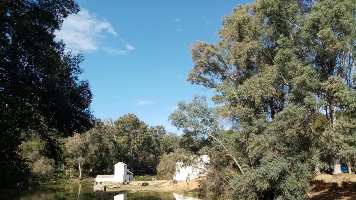 Alcalá de Guadaíra aumenta la vigilancia y seguridad en las instalaciones municipales y los parques del río