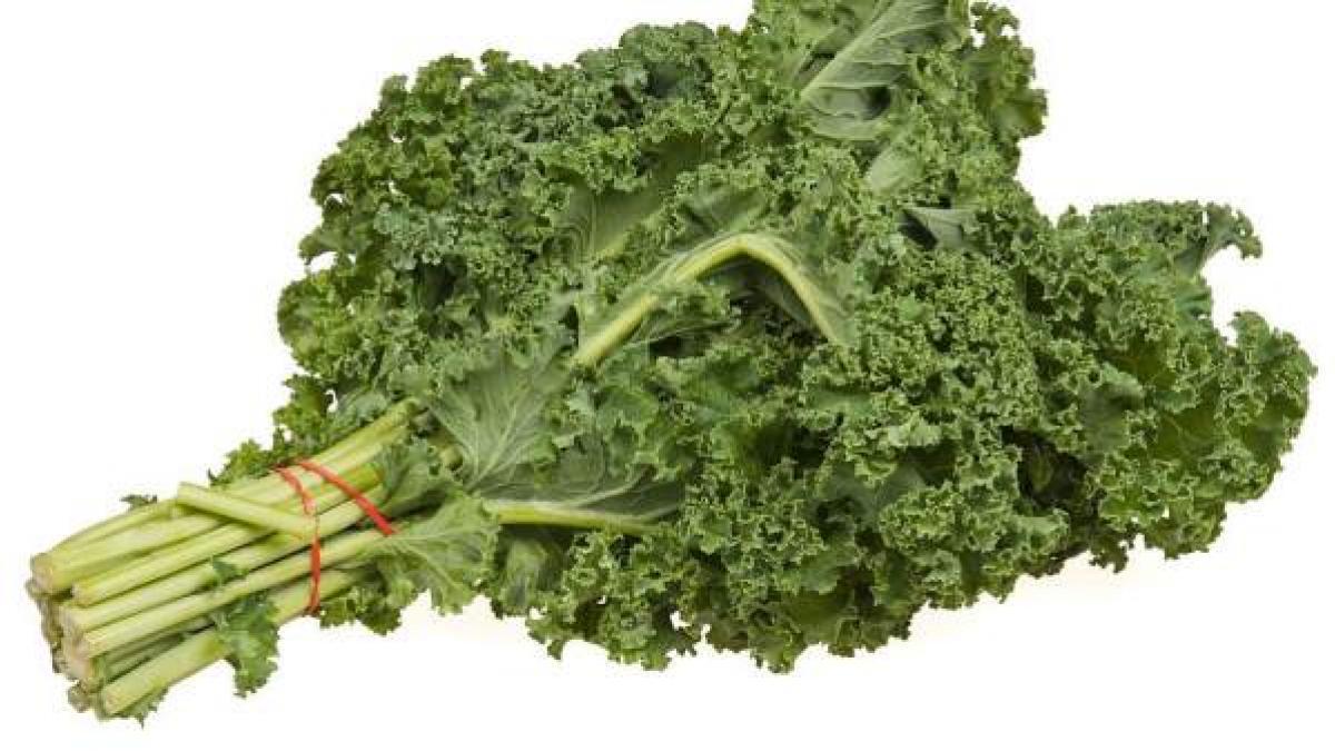 El Kale La Berza De Toda La Vida La Verdura De Moda Un Repaso A Sus Beneficios Y Propiedades
