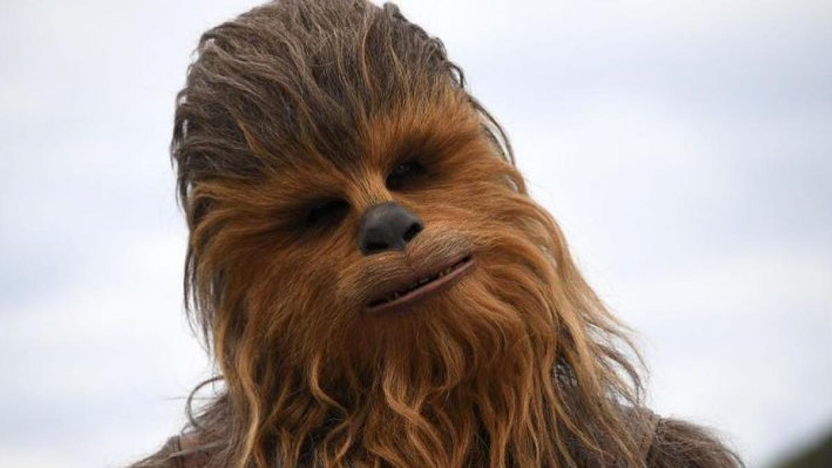 Una tuitera se vuelve viral tras mostrar cómo quedó su peluche de Chewbacca,  de 'Star Wars', después de lavarlo