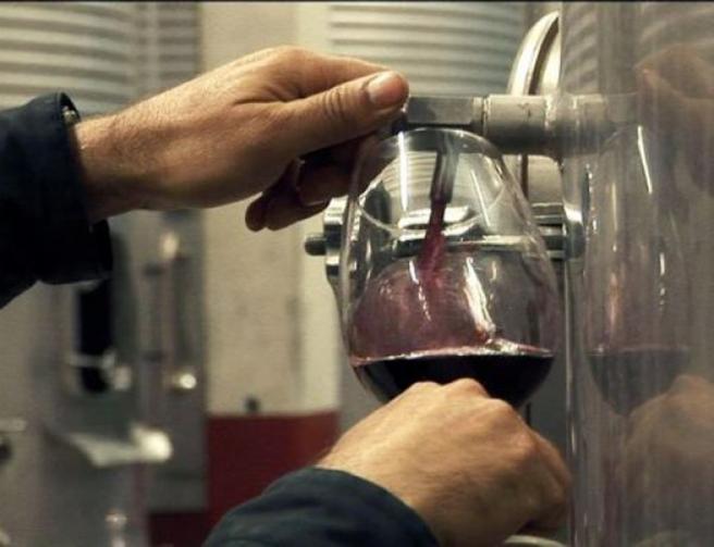 Vino, copa, tinto, vitivinícola
