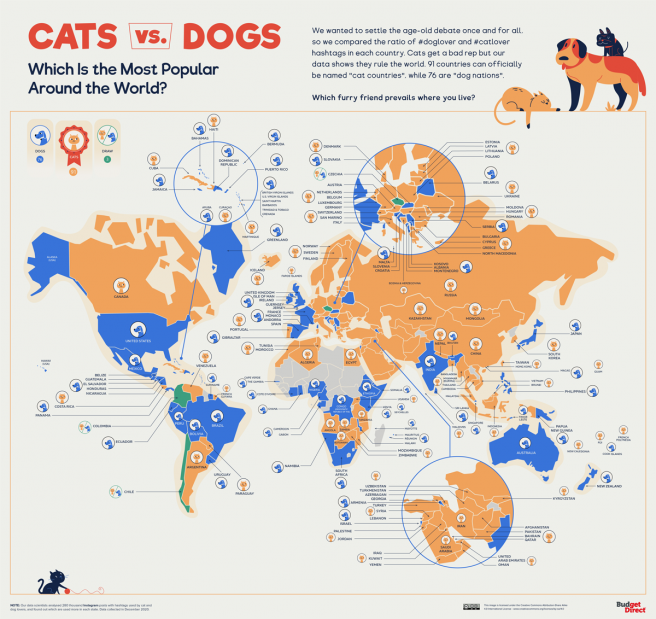 Mapa de preferencias de perros o gatos.