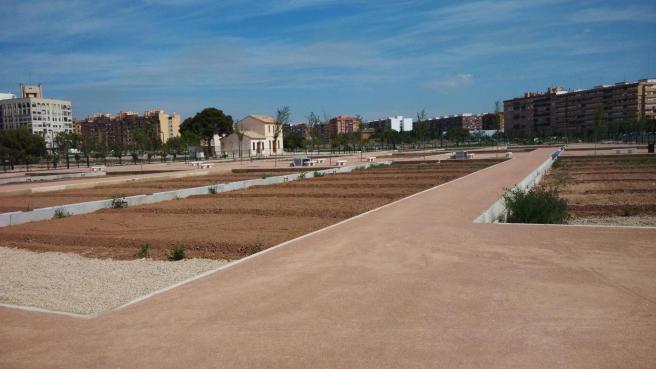 Los huertos urbanos también se incluyen en el proyecto.  En la foto, los del Parque Malilla.
