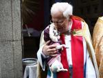 El padre Ángel bendice a un perro en la puerta de la iglesia de San Antón, el día que se honra a las mascotas y animales de compañía.