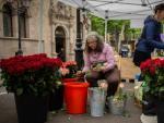 Floristas preparando las rosas para la Diada de Sant Jordi.