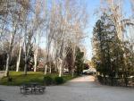 Imagen de recursos de árboles en un parque de Alcobendas.