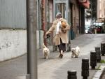 Una mujer camina junto a su perros este martes por una calle madrileña.