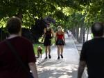 Una pareja pasea con su perro por el interior del parque del Retiro, uno de los 19 grandes espacios verdes que han abierto sus puertas, al entrar Madrid en la fase 1 de la desescalada por coronavirus.
