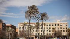 El viento, protagonista en Barcelona