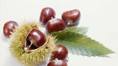 Las castañas, un fruto seco