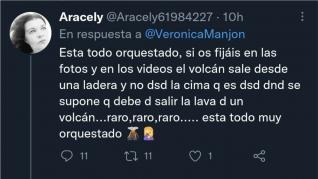 """""""Negacionistas de volcanes"""" en Twitter"""