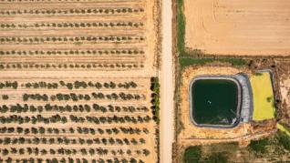 WWF denuncia un robo de agua en cuatro de los mayores acuíferos de España