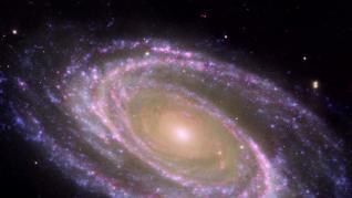 Ejemplo de galaxia espiral cercana, M81, donde se identifica fácilmente el bulbo, la parte central más rojiza, y el disco, plagado de zonas donde se forman estrellas actualmente y aparecen como regiones azules formando brazos espirales. NASA/JPL-CALTECH/ESA/HARVARD-SMI   (Foto de ARCHIVO) 7/6/2021