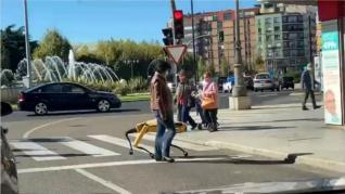 La explicación al paseo por León de Spot, el 'perro robot'