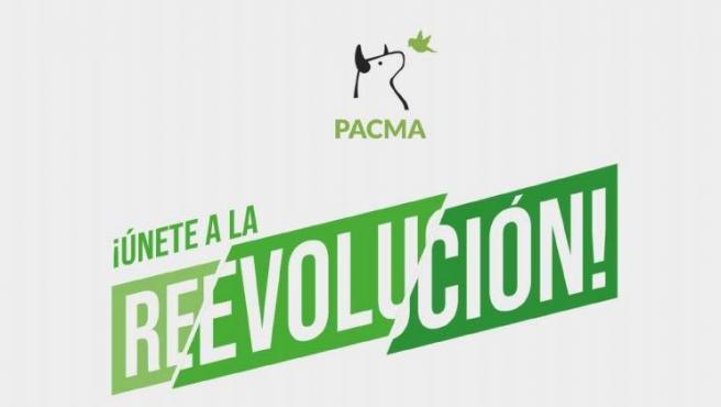 Eslogan de Pacma para las elecciones del 10-N.