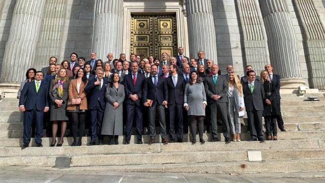 El grupo parlamentario de Vox posa ante la Puerta de los Leones del Congreso
