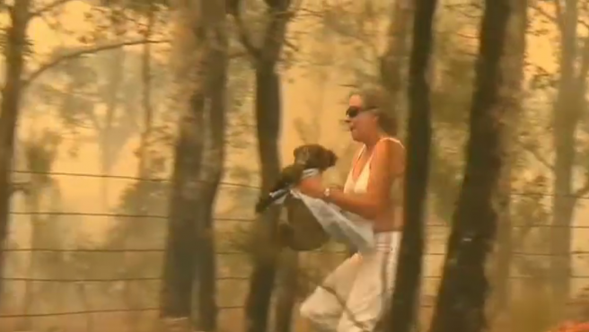 Una mujer rescata un koala de entre las llamas durante un incendio forestal en Australia.