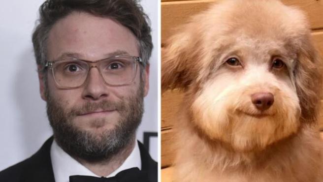 El actor Seth Rogen y el perro Nori.