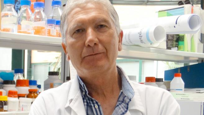 José Antonio Sánchez Alcázar, investigador principal en el Centro Andaluz de Biología del Desarrollo.