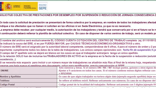Imagen de la solicitud de demanda de empleo colectiva.