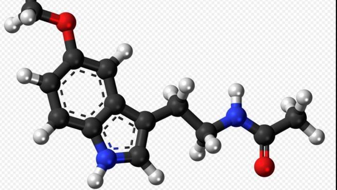 Estructura molecular de la melatonia: en negro el carbono (C); en blanco el hidrógeno (H); en rojo el oxígeno (O) y en azul el nitrógeno (N).