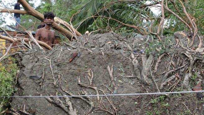 Trabajos para retirar los restos de un árbol derribado por el ciclon Amphan en en la localidad india de Bokkhali.