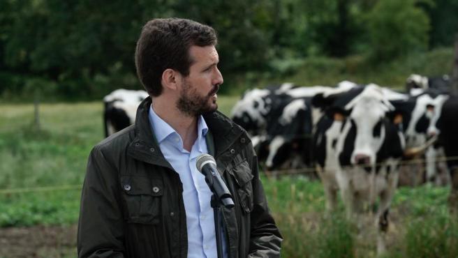 Pablo Casado, en Galicia.