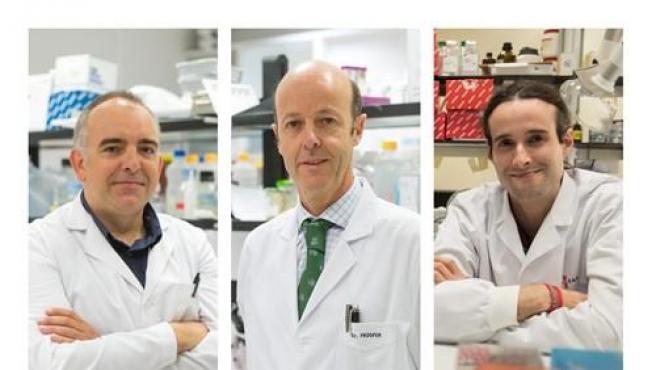 Los investigadores Xabier Agirre, Felipe Prósper e Iñaki Martín Subero.