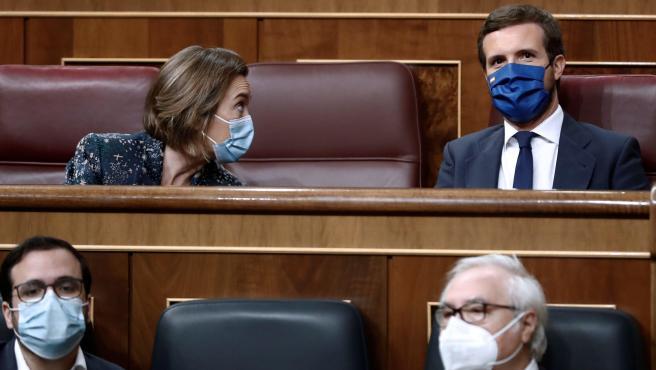 El líder del PP, Pablo Casado (d, arriba) conversa con su portavoz Cuca Gamarra (i, arriba), tras los ministros de Consumo, Alberto Garzón (i, delante) y el ministro de Universidades, Manuel Castells (d, delante) a su llegada al Congreso de los Diputados.