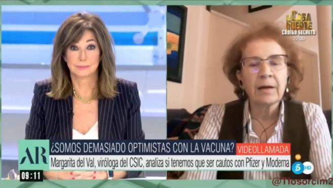 Margarita del Val, viróloga del CSIC, pesimista sobre las vacunas contra la Covid.
