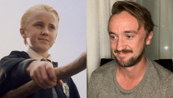 Tom Felton (Draco Malfoy en 'Harry Potter')