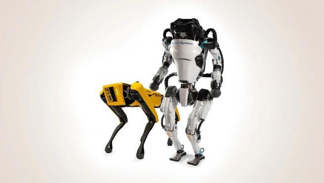 Los productos de Boston Dynamics incluyen al perro Spot y al humanoide Atlas.