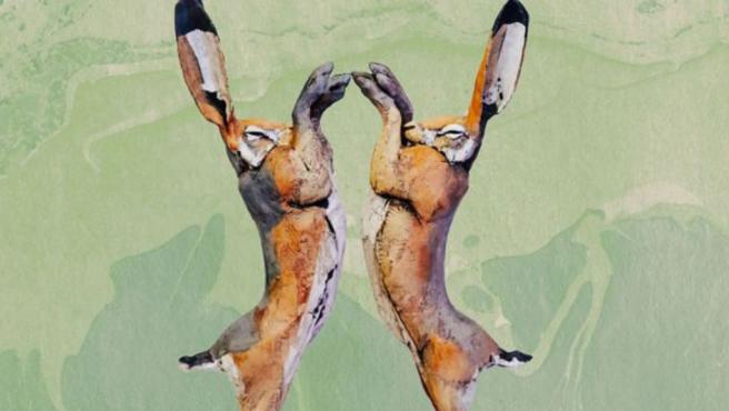 El Lush Prize es el mayor premio anual del sector en contra del ensayo con animales.