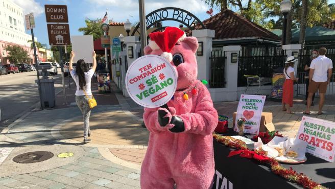 Una persona disfrazada de cerdo en un puesto de PETA Latino.
