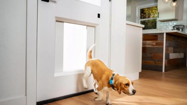 La puerta puede abrirse desde una app o mediante un collar con Bluetooth para tu mascota.