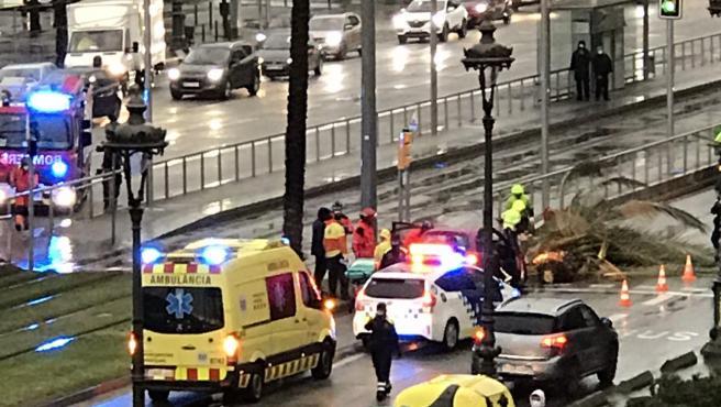 Momento en que los servicios de emergencias atienden a una mujer atrapada en su vehículo tras caer una palmera en la calle Diagonal de Barcelona a causa del temporal Hortense.