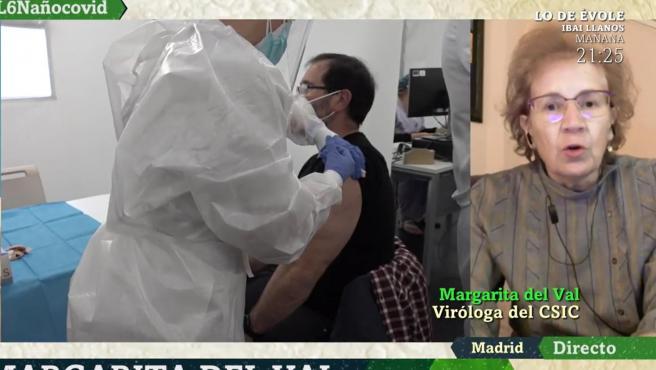 La viróloga del CSIC Margarita del Val, en una entrevista en 'laSexta Noche'.