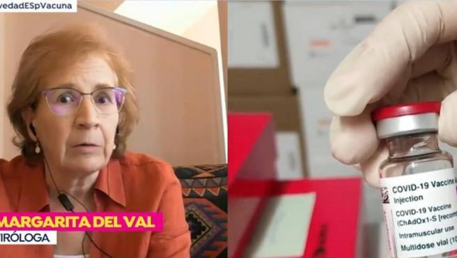 La viróloga Margarita del Val interviene en 'Espejo Público'.
