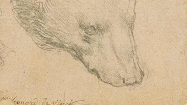 El dibujo de Leonardo da Vinci que sale a subasta este verano.