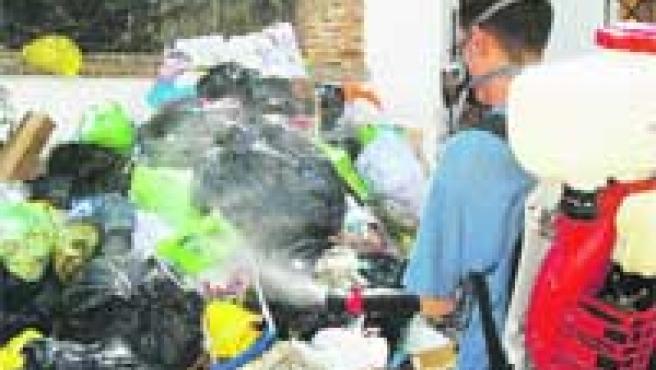 Un trabajador del Ayuntamiento de La Zubia desinfecta la basura de una de las calles de la localidad.