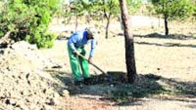Un obrero trabajando en el parque de Moratalaz.