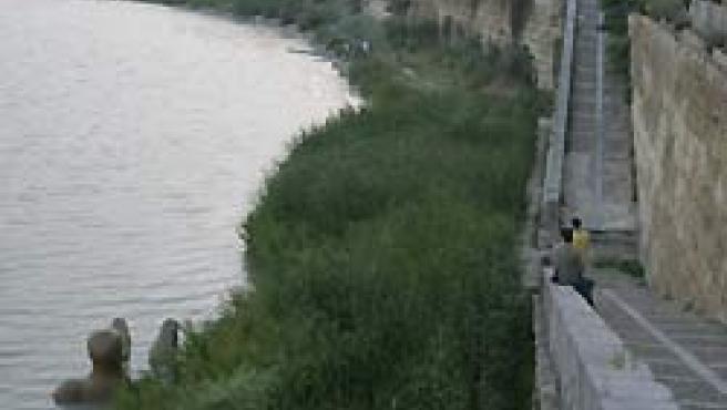 Numerosos curiosos se agolpan a las orillas de la zona donde ha aparecido varada la escultura (R.S).