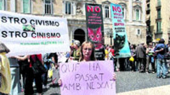 Maniestación en la plaza Sant Jaume, ayer, en favor de los derechos de los animales. (Jordi Soteras)