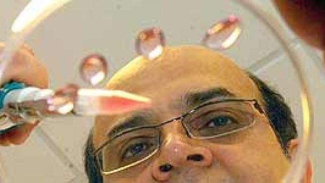 El científico Karim Nayernia trabaja en un laboratorio de la Universidad de Newcastle (Reino Unido).