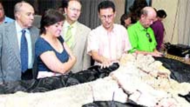 Lo encontraron en el yacimiento de El Oterillo, en Salas de los Infantes, Burgos.(efe)