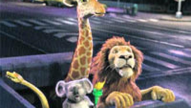 Un león, una jirafa, una anaconda, un koala y una ardilla tienen que salir del zoo de Nueva York para rescatar a un cachorro de león que ha sido enviado por error a la selva africana.