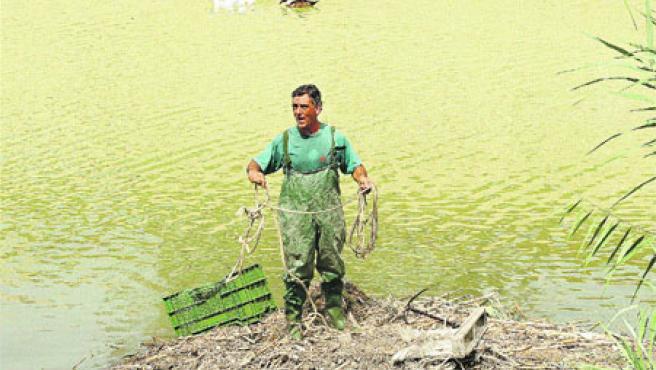 Han pescado una caja de limones de las aguas del Segura. Fran Manzanera.