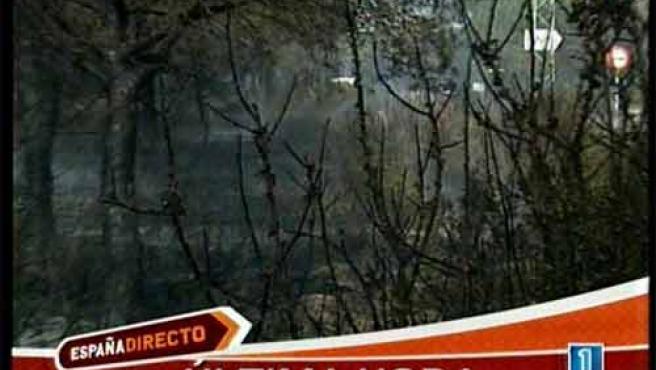 Imágenes divulgadas por RTVE del incendio que se ha originado en el municipio gaditano de Conil